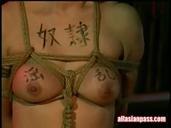Hirokonishino and tiger lily - horny and tied up asian babe