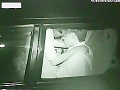 Two Horny Couples At Night Car Sex